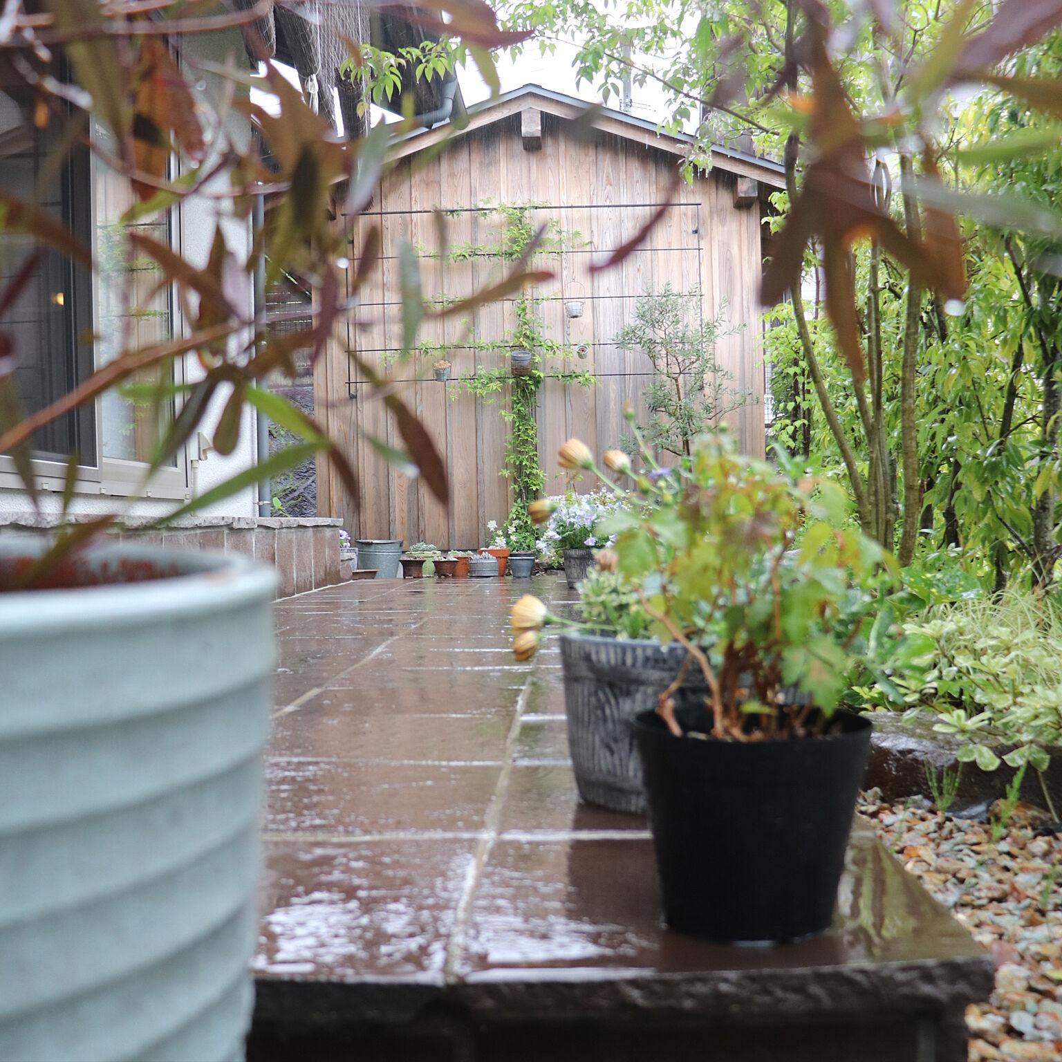 おうちにいても楽しく有意義に♪雨の日の過ごし方のヒント