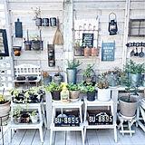 家庭菜園、植物、花のある暮らしに。99.9%食品原料なのに効き目バツグンの、虫&病気対策アイテムとは?