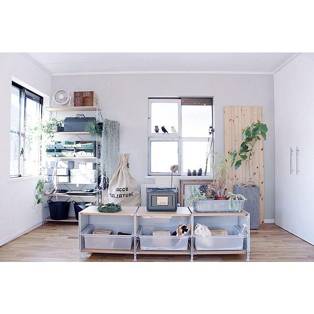 My Shelf,ペットハウス,ペット,モルモット,TOMOS Atsushiの部屋