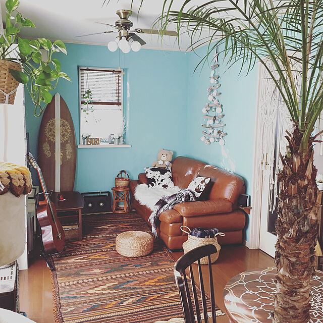 Lounge,ボヘミアンビーチ,海を感じるインテリア,サーフスタイル,シーグラスバスケット,シーリングファン,マクラメのれん,ミントブルーの壁,サーフボードリメイク,フェニックスロベレニー,キリムラグ,フェイクファー,スリーコインズ,ニトリソファー,BOHO,流木ツリー,狭小住宅 bowbowcoの部屋