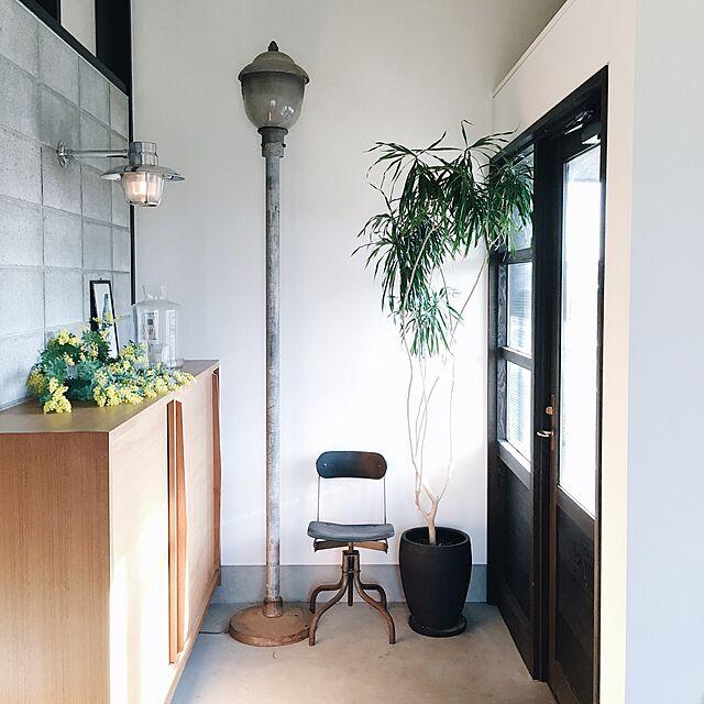 Entrance,インダストリアル,ヴィンテージ,観葉植物,アンティーク,ナチュラル,照明,北欧,グリーンのある暮らし,花のある生活,花のある暮らし,ミモザ ik_journalの部屋