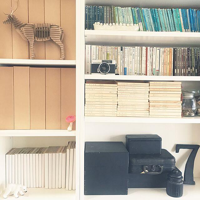 My Shelf,陶芸作品,ガラス瓶,箱,キノコ,鹿段,カメラ,アルバム,マンガ,文庫本,無印良品,IKEA,本棚 romimushiの部屋