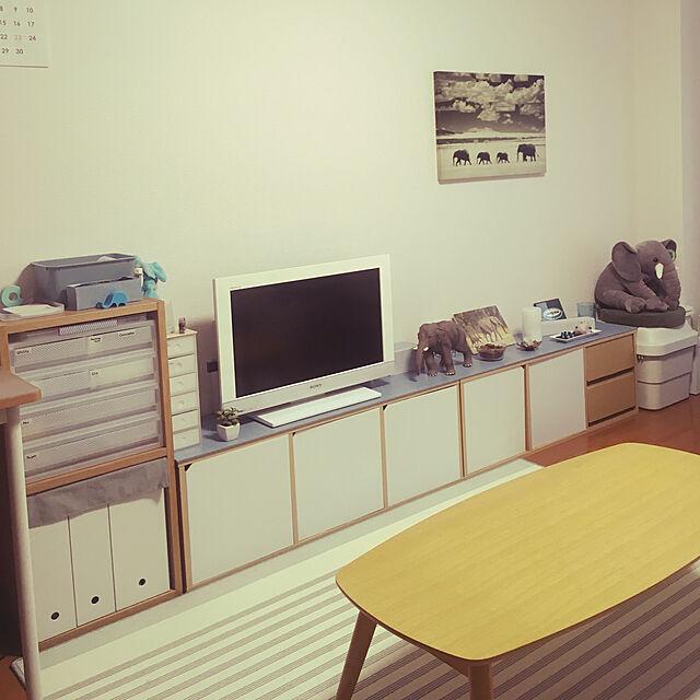 My Shelf,プラスティック段ボール,初投稿,無印良品,DIY,100均,リメイクシート,目隠しシート,隠す収納,テレビボード,ローボード,リメイク,Francfranc,ぞうさん,インテリアボード rinomy.の部屋