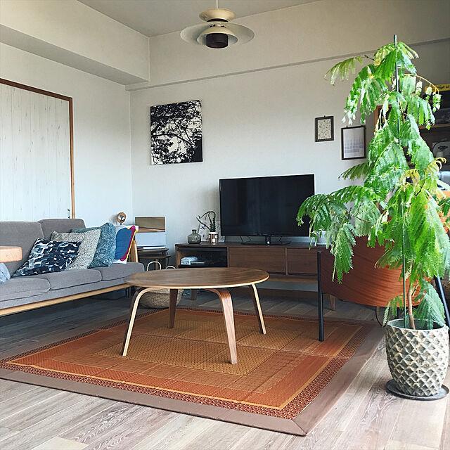 Lounge,イケヒコい草ラグ,い草ラグ,賃貸マンション,レトロ,北欧テイスト,ラグ,フロアタイル,marimekko,観葉植物,IKEA,イケヒコ yurikissaの部屋