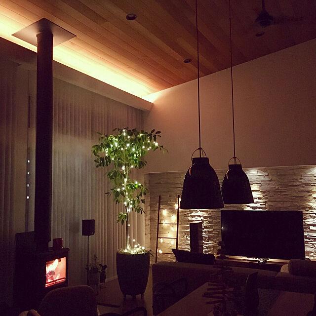Lounge,板張り天井,バーチカルブラインド,間接照明,アクタス,薪ストーブ,イルミネーション,アイラーセン,壁面,グレーインテリア,北欧,ダウンライト,ウォールナット,石張り 1go-Sanの部屋