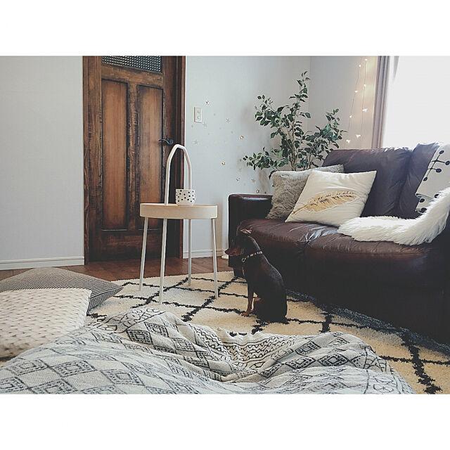 Lounge,Boho Style,BOHO,ミックスインテリア,春インテリア,クッション,BURVIK,サイドテーブル,犬と暮らす,犬のいる暮らし,UNIQLO×EAMES,ニトリ,カインズ,新入り,シンプル,シンプルライフ,木の家,小さなお家,IKEA,柿渋塗装,パイン材,フェイクグリーン,自然素材,新商品,NEW,ブールヴィーク Reiyaの部屋
