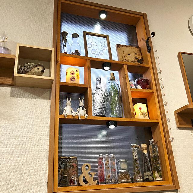 Đui bắt nắng, thảo dược, chống lạnh, kệ trưng bày, khung cửa sổ DIY, DIY lần đầu tiên My Shelf, luôn like và cám ơn các bạn gạo thank, cảm ơn các bạn đã tiết kiệm ♡ Coffee House room