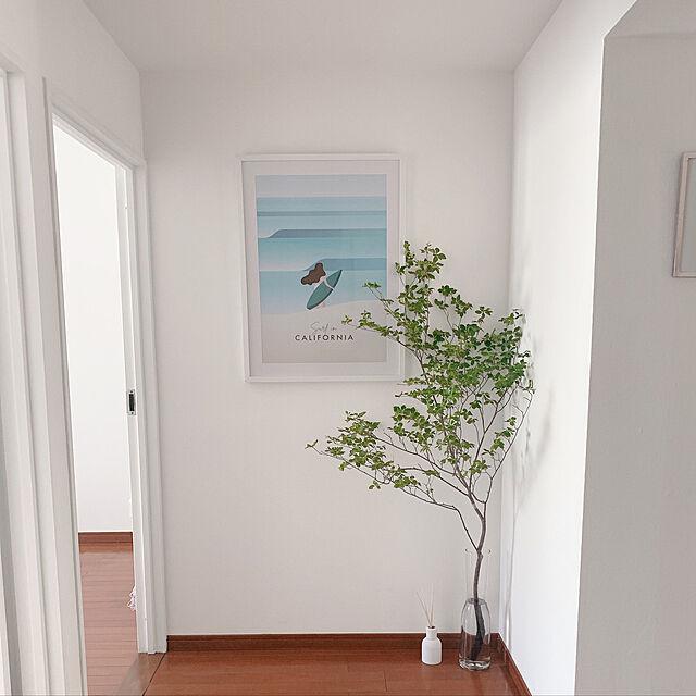 ドウダンツツジ,ナチュラル,一人暮らし,観葉植物,ホワイトインテリア,Entrance otiyoの部屋