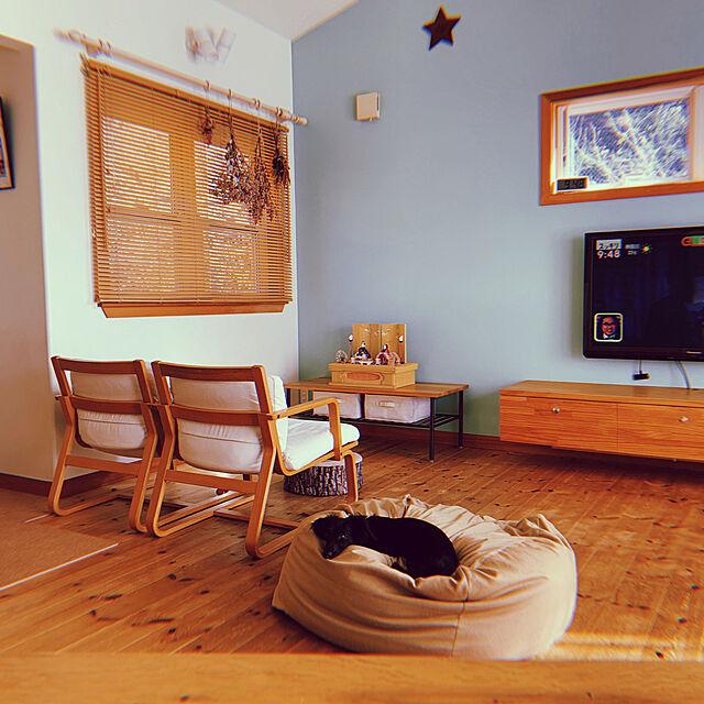 シンプルな暮らし,イベント参加,ミニチュアダックス,ペットと暮らすインテリア,無印良品,ペットと暮らす家,Lounge kyaoの部屋