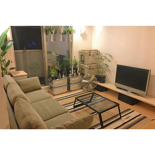 Lounge,観葉植物,Helinox,シェルフコンテナ,GOOUTLivin',DIY,アウトドアライフ,アウトドア,thearth,アウトドア用品,アウトドアリビング,GOOUT,カリフォルニアスタイル,Snowpeak,unico ソファ,アウトドアインテリア,YETI TKLifeの部屋