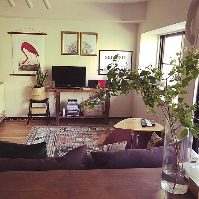 Lounge,DIY,ウォールデコ,ボヘミアンミックス,アンティーク,観葉植物 Minoriの部屋