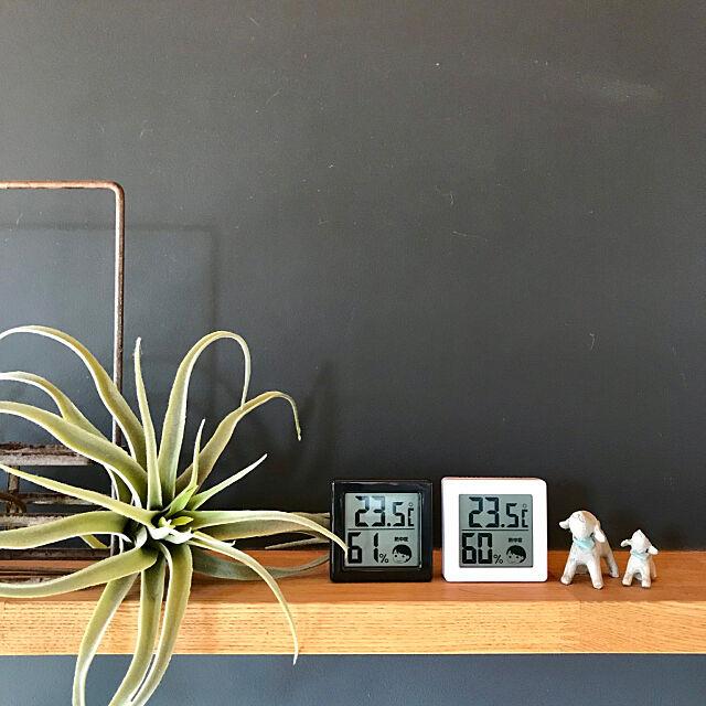 My Shelf,温湿度計,わんこと暮らす家,いいね&フォローありがとうございます☆,わんこがいます,KOTOSの家,インスタ→yukari1088,黒板塗料 yukariの部屋