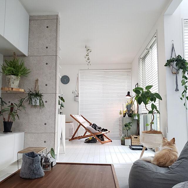 Overview,DIY,ハンドメイド,ナチュラルモノトーン,ig→mimt38,コの字の家,観葉植物,白い床 mi-の部屋