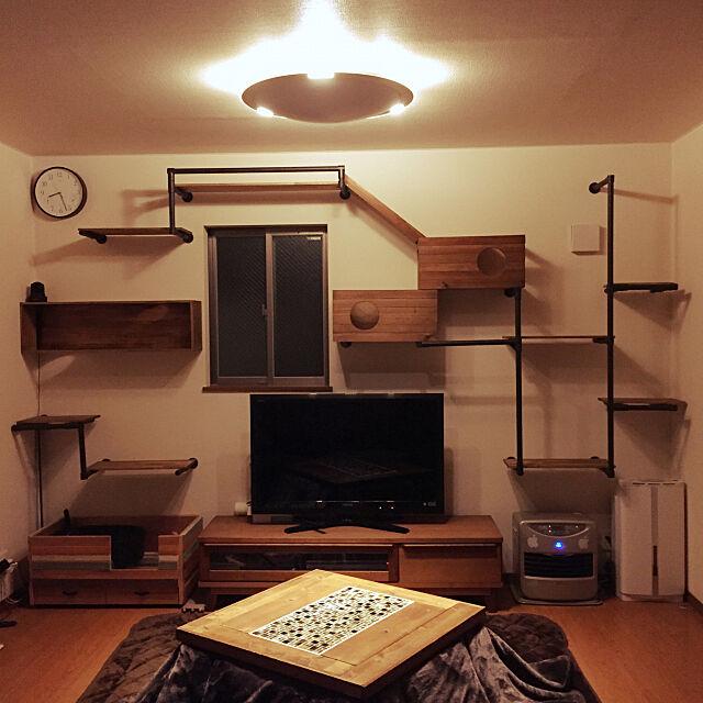 Lounge,猫のトイレ,猫のいる暮らし,ハンドメイド,DIY,猫,男前,ワトコオイルダークウォルナット,アイアンペイント,イレクターパイプ,アイアンペイント ターナー社,こたつ天板DIY,コタツ天板,SPF材,こたつの天板DIY,キャットウォークDIY,キャットウォーク piyocchiの部屋