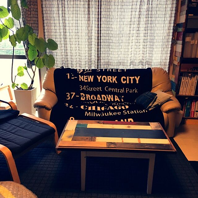 ウンベラータ,観葉植物,しまむらのタオルケット,ニトリのラグ,DIY,IKEA,男前,アメブロ→maami0909,Overview maamiの部屋