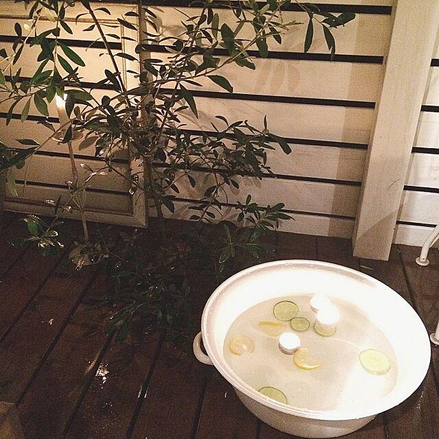 オリーブ,キャンドル,野田琺瑯,たらい,NO GREEN NO LIFE,Overview asamiの部屋
