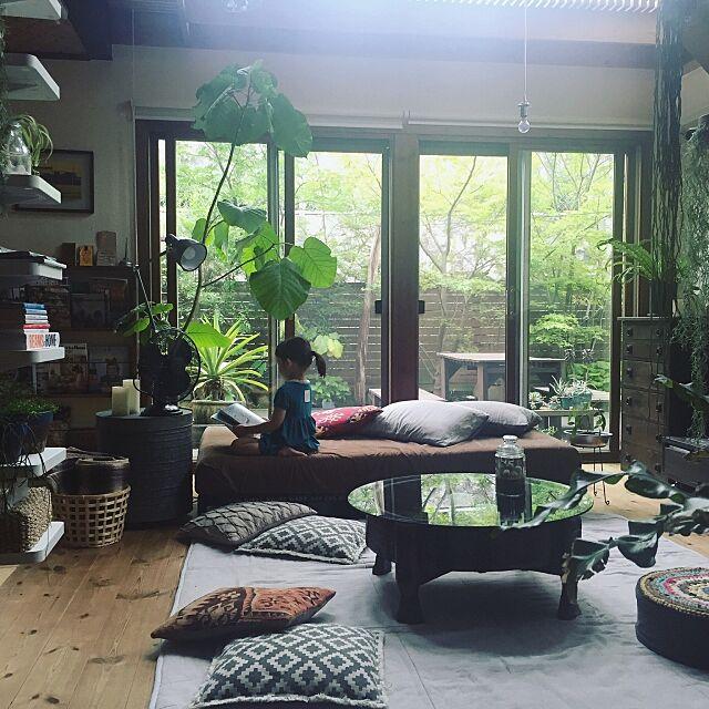 Overview,ウンベラータ,ソファ,無印良品,チャパティテーブル,ちゃぶ台,ニトリ,植物,クッションカバー,オールドキリム,NO GREEN NO LIFE,こどもと暮らす。,IKEA,いなざうるす屋さん,ベルメゾン,扇風機,アガベ,テラリウム,植物のある暮らし yururi-8239223の部屋