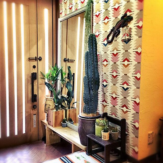 Entrance,サボテン,柱サボテン,2×10材,ベンチ DIY,サウスウエスタン,壁紙DIY,10000人の暮らし,壁紙屋本舗,セルフリフォーム,DIY,建売をオシャレにしたい,木彫りトカゲ,ベジタウォール,漆喰壁DIY,アクセントクロス ladybug.の部屋