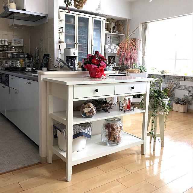 コンソールテーブル カーシー,ニトリ,グラスジェムコーン部,いつも 素敵✨なコメントありがとう❤️,フォロワー様に感謝❤️,オキナワスズメウリ部,観葉植物,My Shelf,シャビーシック reeの部屋