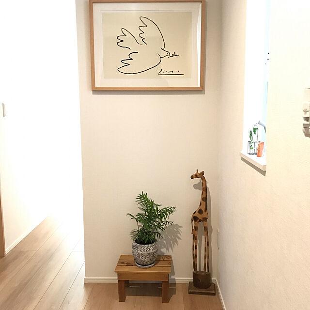 ピカソ,グリーンのある暮らし,すっきり暮らしたい,新築一戸建て,狭小を楽しむ,北欧×和mix目指したい♡,Entrance hananokaoriの部屋