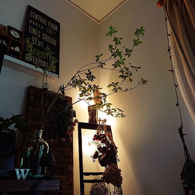 Lounge,間接照明,ジャンクスタイル,シャビーシック,平屋暮らし,グリーンのある暮らし,ドウダンツツジ,ジャンク雑貨 satomiの部屋