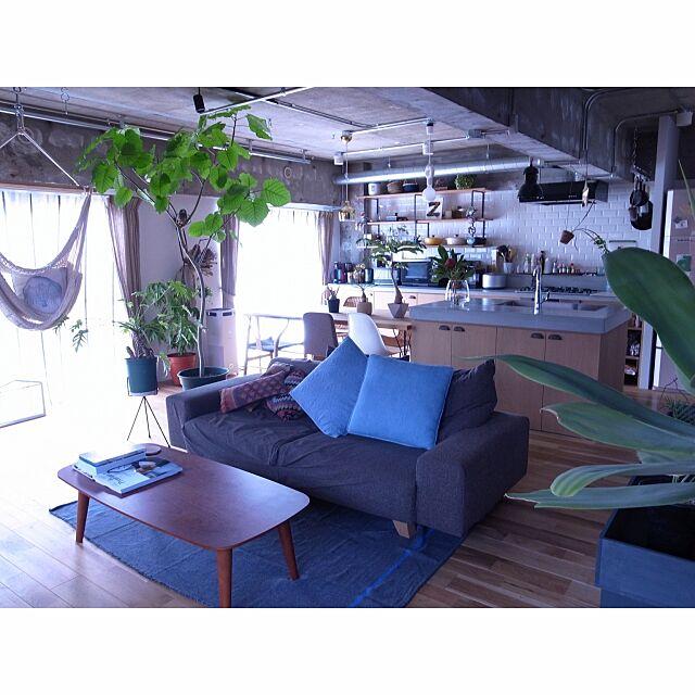 Overview,シベリアンウォールナット,Ⅱ型キッチン,NOYES,ウンベラータ,Hammock2000,リノベーション,リノベる。 aaniの部屋
