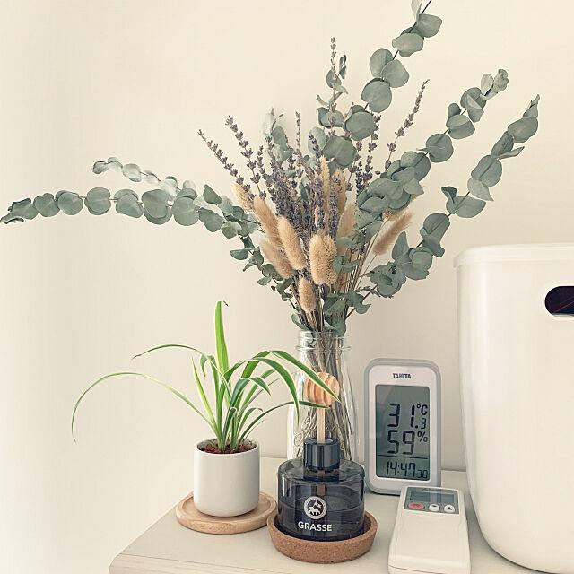 観葉植物,無印良品,DIY,Bedroom katkat1474の部屋