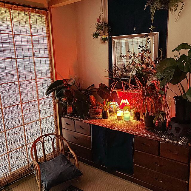 和室のインテリア,ダイソー,100均,フェイクグリーン,ジャングル化計画,ステンドグラスランプ,Lounge cherryの部屋