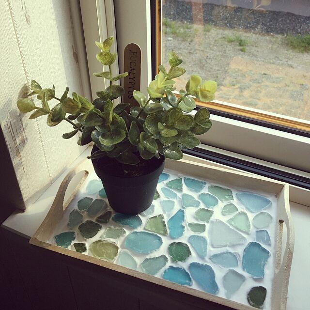 My Shelf,シーグラス,フェイクグリーン★,トレイ,紙粘土,100均,ダイソー,家にあるもので.... tomoの部屋