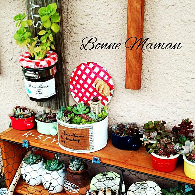My Shelf,NO GREEN NO LIFE,多肉植物,ガーデニング,植物のある暮らし,びん,リメイク瓶,リメイク缶,セリアの食器,セリア,リメ缶,ボンヌママン,ボンヌママン風,多肉寄せ植え,ホースクランプ,多肉棚,あずき缶 sakusakuの部屋