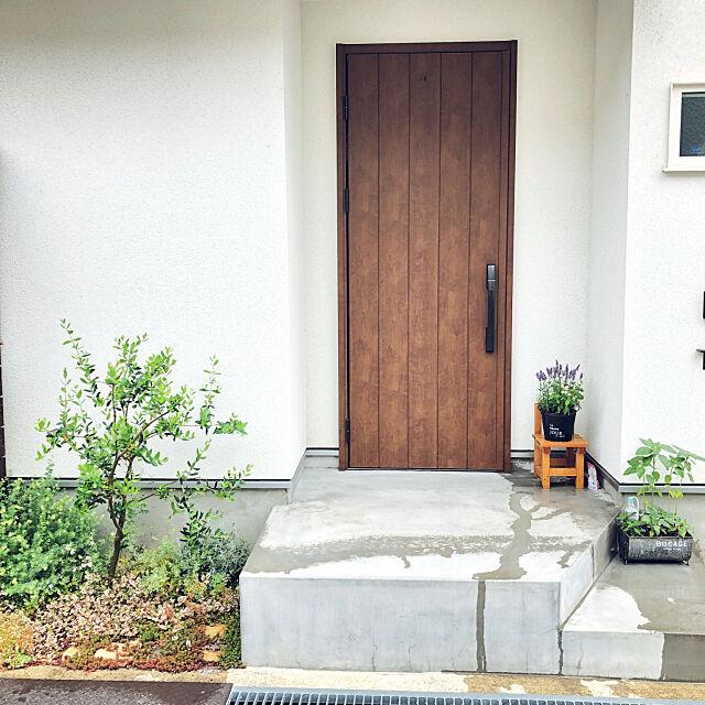Entrance,玄関,ラベンダー,オリーブ,ひまわり,セダム,外構,ジニア,ブリキの鉢,植物のある暮らし,ヴェナート,植栽スペース,YKK玄関ドア,ドア,サカタのタネモニター t--ieの部屋