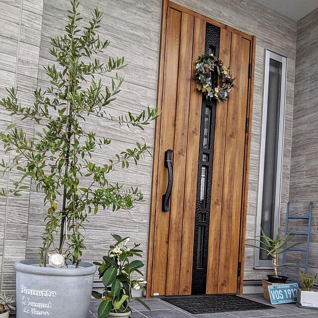 Entrance,玄関,外壁,外壁 サイディング,ケイミュー,木目調,YKK玄関ドア,スマートキードア,オリーブ,オリーブの木,誕生樹,シンボルツリー,玄関ドア yukariの部屋