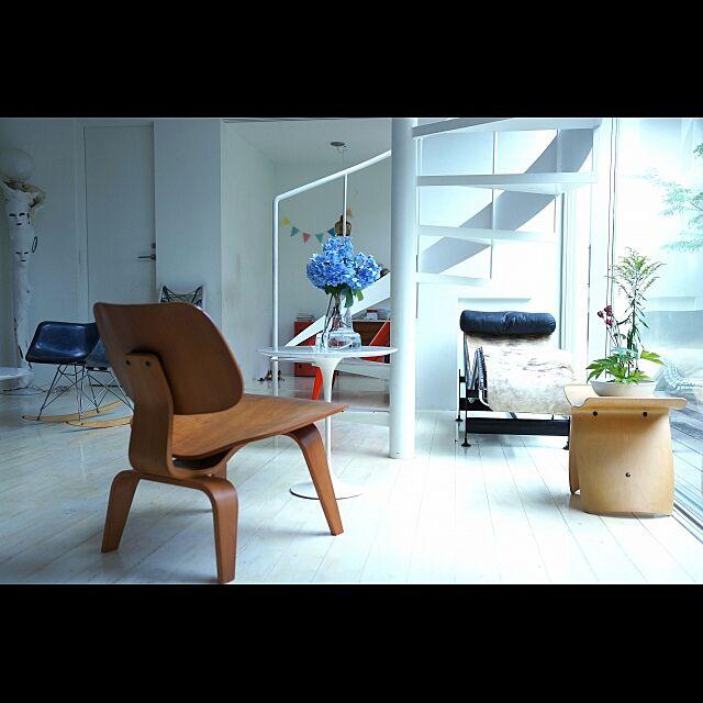 デザインパパカーツ Design papa Ka-tuの部屋