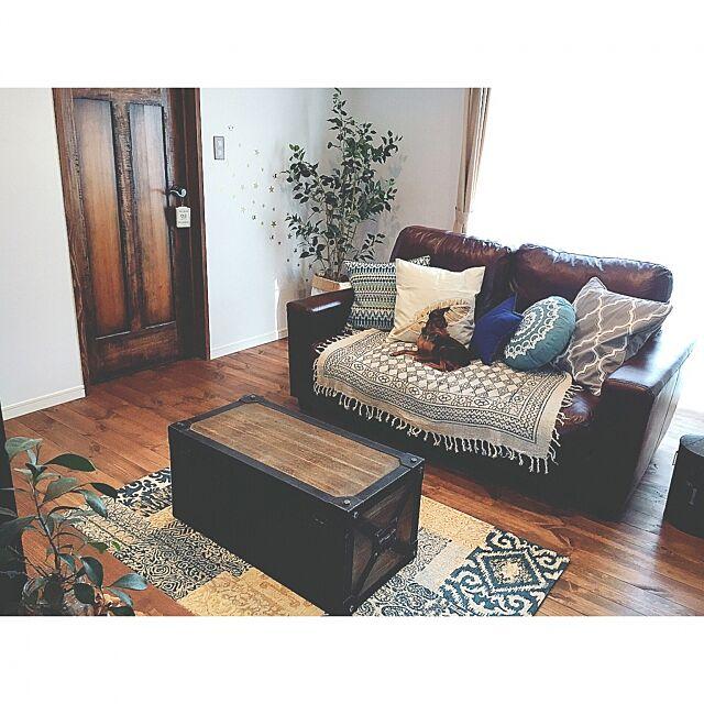 Lounge,いつもいる場所,塗り壁,自然素材,柿渋塗装,パイン材,ナガイの建具,ビーカンパニー,ニトリのクッションカバー,インネストラグ,ボンデッドレザー,ニトリのフェイクグリーン,モロッコ,海外インテリアに憧れる,ソファ,夏を感じるインテリア,シラス壁,ラグ,オーダードア,ニトリ,マライカの布,ミニピン,ミニチュアピンシャー,犬と暮らす,インテリアオフィスワン Reiyaの部屋