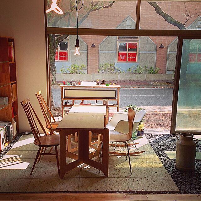 Overview,玄関,石,大谷石,リノベーション,renovation ,照明,デザイン,観葉植物,建築,デザイナーズ家具,デザイナーズチェア,DIY,North6 Antiques RyojiOhataArchitectの部屋