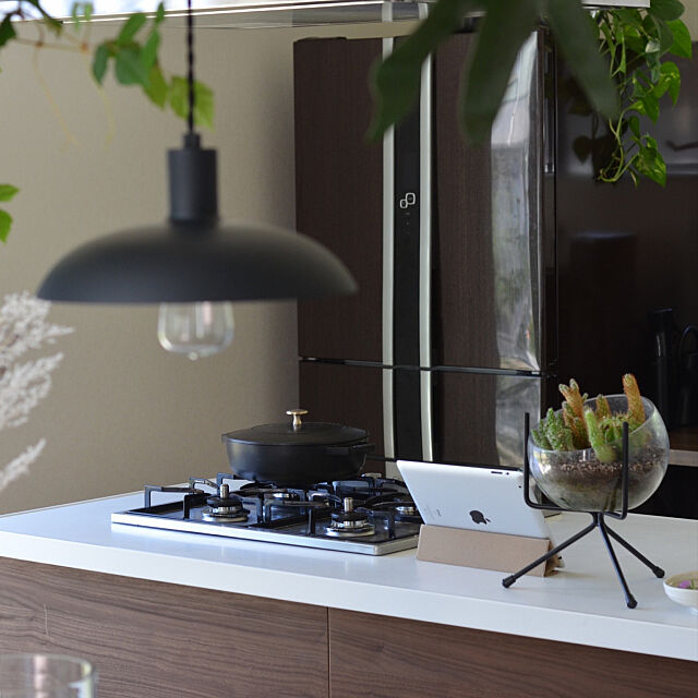 Kitchen,インスタ tongarihouse,シンプル,グリーンのある暮らし,観葉植物 tongariの部屋