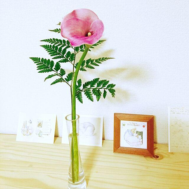 My Shelf,切り花好き,花のある暮らし,カラー,IKEA,ピーターラビット ポストカード uki__coの部屋