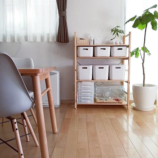 Phòng chờ, Ichijo Komuten, iCube, kệ đơn bằng gỗ thông, MUJI, Scandinavian, Scandinavian natural, phòng lưu trữ hàng mẫu giáo mii.icube