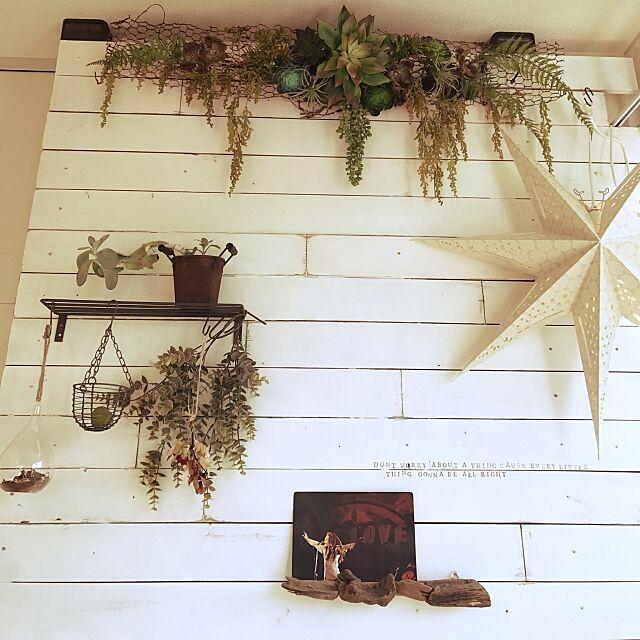 On Walls,板壁,スターライト,NO GREEN NO LIFE,DIY,多肉植物,観葉植物,フェイクグリーン kiyoの部屋