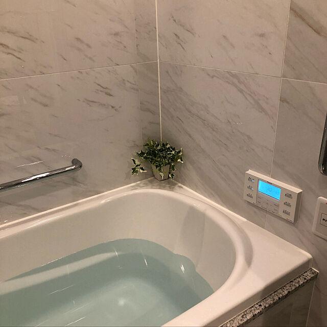 ニトリのフェイクグリーン,ニトリ,Bathroom taro_kawaの部屋