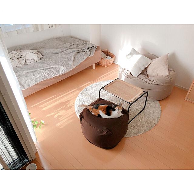 一人暮らし,猫と一人暮らし,1R,一人暮らし 賃貸,ワンルームインテリア,シンプルな暮らし,オープン収納,猫との暮らし,にゃんだふるらいふ,ワンルーム,一人暮らしインテリア,猫と1R,断捨離中,猫と賃貸,ダンシャリアン,Lounge warashibeの部屋