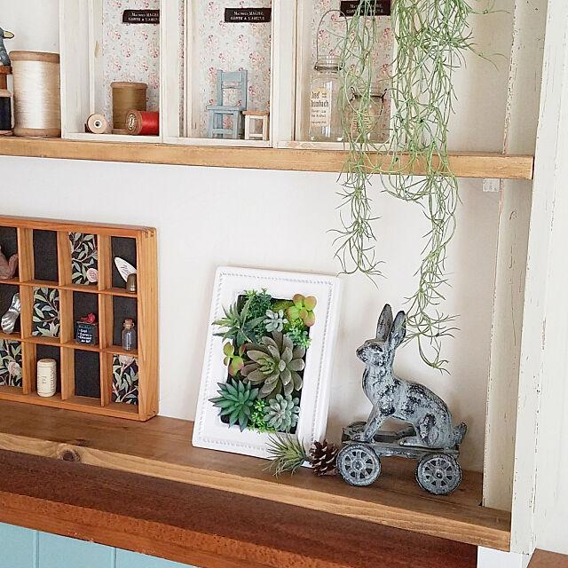 My Shelf,ニトリ,フェイクグリーン,ニトリのフェイクグリーン,棚DIY,好きなものに囲まれた暮らし,モニター当選しました♡,多肉セラミックフレーム,ニトリ2018フェイクグリーンモニター,インスタ→chocoa_cafe chocoの部屋