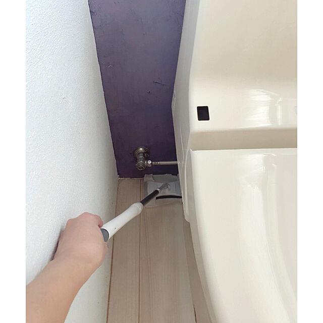 トイレ,ウイルス除去,クイックル,トイレ掃除,除菌,掃除道具,漆喰の壁,Bathroom saooo39の部屋