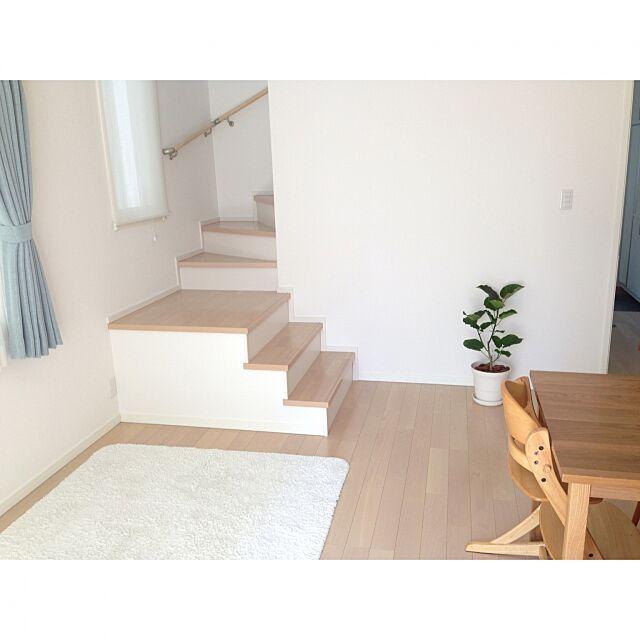 Lounge,グリーンのある暮らし,シンプル,スッキリ暮らしたい,ウンベラータ,リビング階段 mamaの部屋