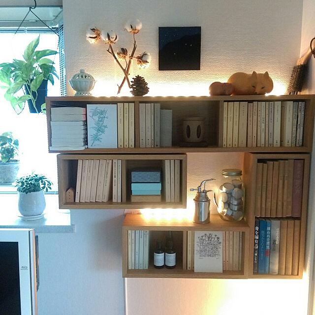 My Shelf,本棚,イベント参加中,すっきり暮らしたい,木が好き,ナチュラルインテリア,賃貸,転勤族,無印良品,無印良品 壁に付けられる家具,IKEA 照明,見せる収納,グリーンのある暮らし,リサラーソン,秋支度,コットンドライフラワー johnの部屋