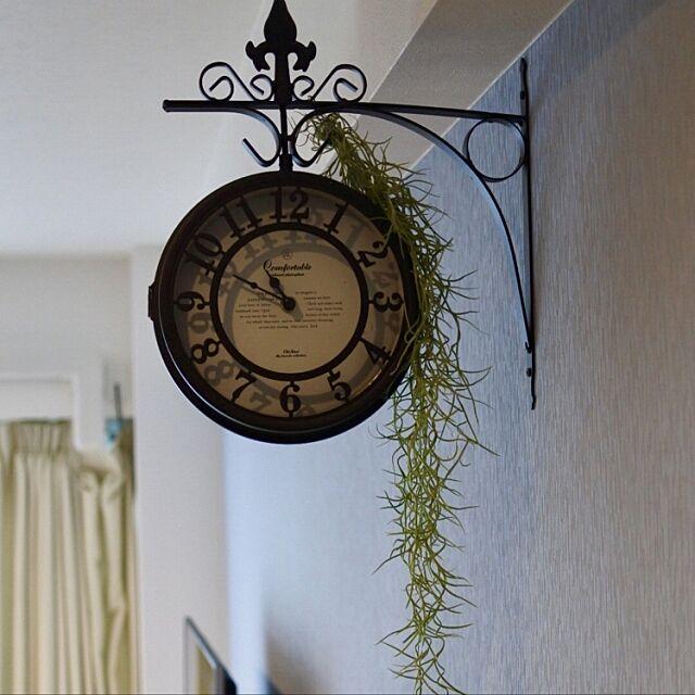 On Walls,両面時計,エアープランツ,アクセント壁紙,犬と暮らす家,フレンチナチュラル,一人暮らし,アクセントウォール,フレンチシャビーに憧れて ayakoの部屋