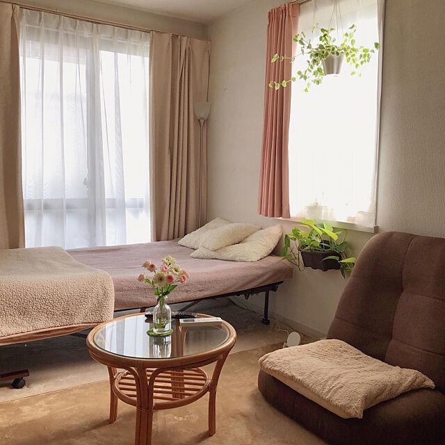 ポトス,ペペロミア,お花,座椅子,出窓,折り畳みベッド,セミダブルベッド,観葉植物,1K,Bedroom RanRanの部屋