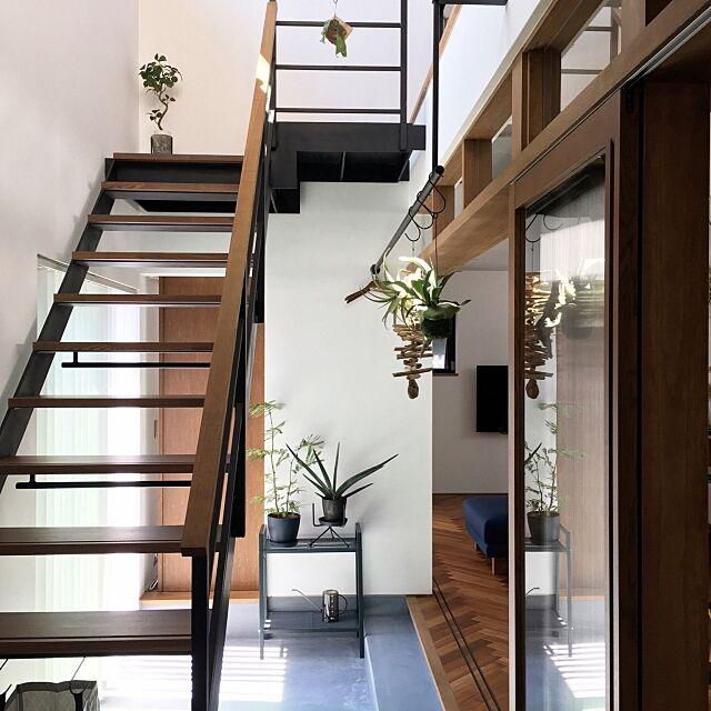 Lounge,室内干し,家事動線,家事楽,スケルトン階段,吹き抜け階段,鉄骨階段,インナーテラス,サンルーム,土間のあるくらし,土間,観葉植物,ヘリンボーン,ヘリンボーン床 mIKAの部屋
