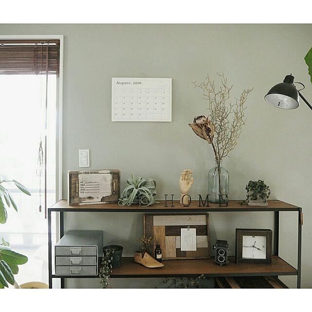 My Shelf,アンティーク,古道具,グリーンのある暮らし,いなざうるす屋さん,壁紙屋本舗さん,DIY,キセログラフィカフェイク,インダストリアル,ドライフラワー,フェイクグリーン,ライト,グリーン asasaの部屋