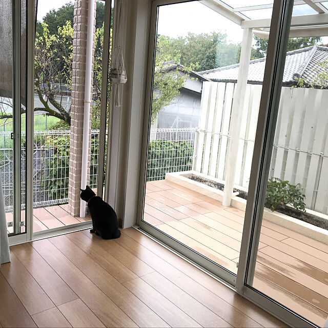 Lounge,ストロベリーアイス,バラ,黒猫,花壇,シュエット,樹ら楽ステージ,リクシル,ウッドフェンス,ウッドデッキ,観葉植物,犬と猫と暮らす,犬と猫のいる暮らし,朝日の当たる場所 Kaoriの部屋